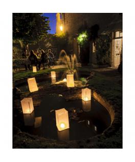 lanternes de sol blanches