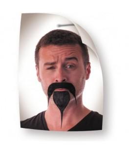 Moustache + Bouc Samourai noire