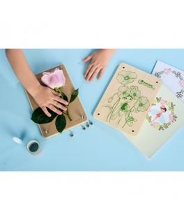 Boîte créative Presse Fleur et Herbier