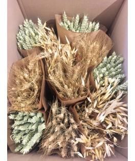 Botte de fleurs séchées - Assortiment Graminées