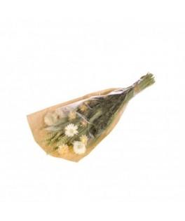 Bouquet de fleurs séchées S Blanc Vert