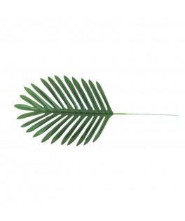 4 Feuilles de palmier tropicales
