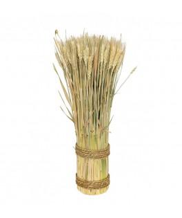 Botte Epi de blé