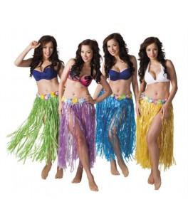Déguisement Jupe Hawaïenne raffia coloré