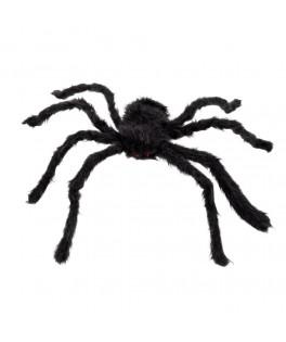 Grosse araignée velue noire