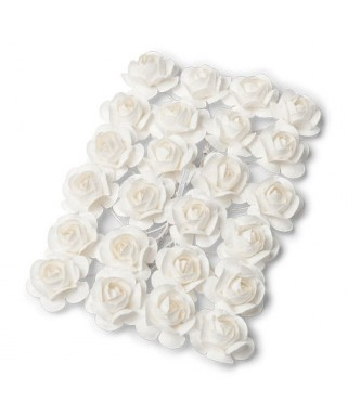 mini roses blanches sur tige