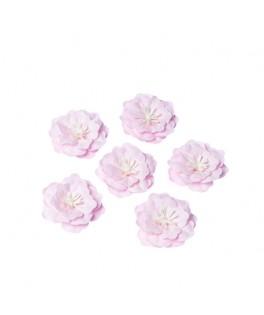 6 Fleurs adhésives papier rose pistil blanc