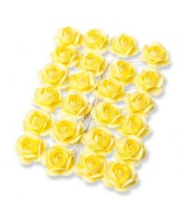 24 Mini roses jaunes sur tige