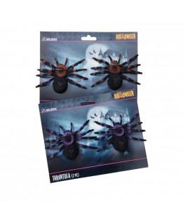 2 araignées noires velues