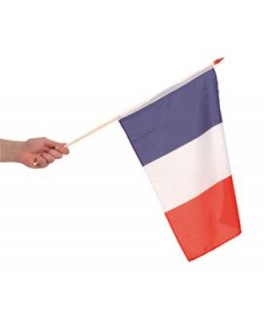 drapeaux supporter france