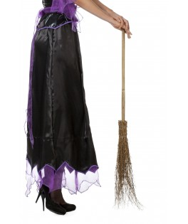 Balai de sorcière